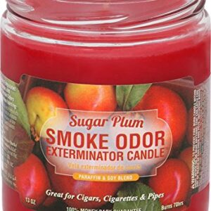 Smoke Odor 13oz Candle Sugar Plum