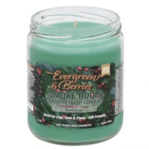 Smoke Odor - 13oz Candle - Evergreen & Berries - Limited Edition