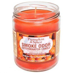 Smoke Odor Exterminator Candle, Pumpkin & Spice, 13 oz