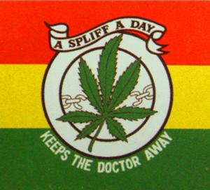 A SPLIFF A DAY FLAG