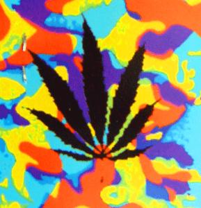 COLOR LEAF FLAG